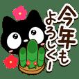 Very cute black cat (New Year)
