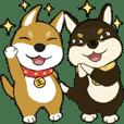 柴犬兄弟 ╴愛玉與仙草 2 ╴日常用語