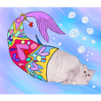 chinchilla silver sticker2