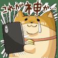 Social game dog