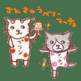 cuchibasi sakuzo3 talkative matcho