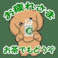 TOY POODLE トイプードル(動く)
