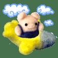 Fluffy companion4