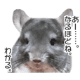 chinchilla's cute sticker vol.2