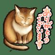 猫と会話するスタンプ
