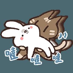 作死的兔子與腹黑的貓5