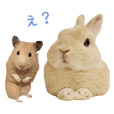 Bunny photo sticker 3