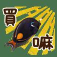 Achilles Tang Fish's crazy life