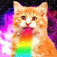 猫写真スタンプ8 ★猫宇宙