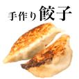 Japanese Food / Gyoza