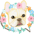 french bulldog motion stickers