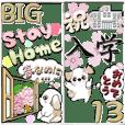 (Big)Shih Tzu Dog13[spring]