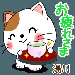 Miss Nyanko for YUKAWA only [ver.2]