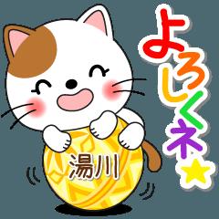 Miss Nyanko for YUKAWA only [ver.1]
