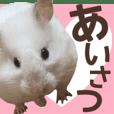 hamster photo sticker masiro