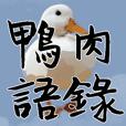 Duck Quotations
