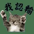 YilunHuang_20210109214317
