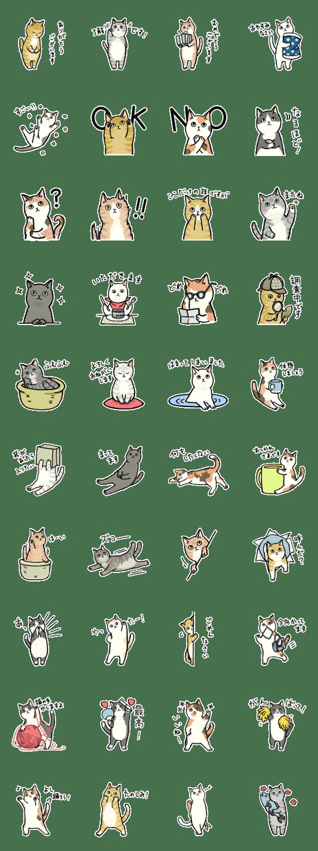 「毎日猫ちゃんたち」のLINEスタンプ一覧
