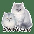 Double Cats咪美雙寶1