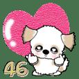 シーズー犬46『春』