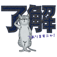 Cute Cats with Japanese Kanji