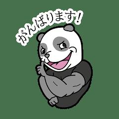 ムキムキパンダの太郎君
