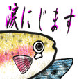 Rainbow trout Sticker 2