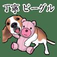 Polite Beagle Dog
