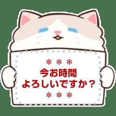 cola cat.2