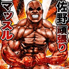Sano dedicated Muscle macho sticker 2