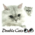 Double Cats 2
