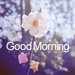 good morning flowers line スタンプ line store