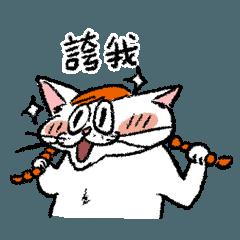 小梅這坨貓