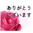 A floral message! Rose(polite language)