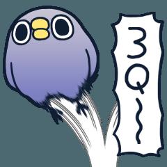 懶的鳥你8