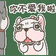 Cute bulldog's daily life