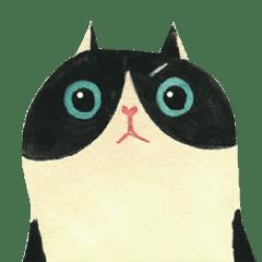 貓先生來了