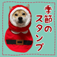 shibainuTSUMUGI Annual event stickers