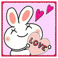Too cute rabbit!
