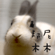 Bunny Mumu