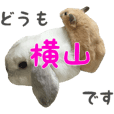 Yokoyama'Ruu&Karu