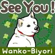 Wanko-Biyori White Shiba Inu 2