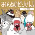 Various birds 03