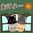 Cute little cats 4!!