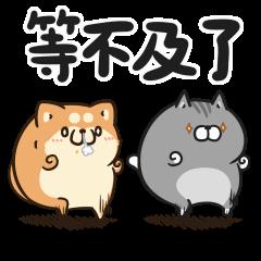 胖胖的狗和貓
