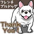 Wanko-Biyori French Bulldog 3