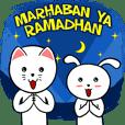 White Weird Cat & Rabbit : Ramadhan 2