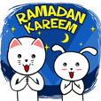 White Weird Cat & Rabbit : Ramadan