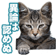 Cat Photo Sticker Type01