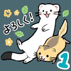OKOJO & YAMANE 1